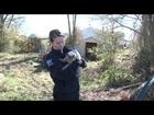 Hurricane Sandy: The HSUS's Animal Rescue Team