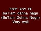 Learn Amharic Basic Vocabulary, Words & Phrases-Be Ethiopian