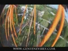 Tatsu roller coaster six flags magic mountain